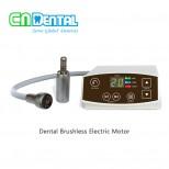 COXO® C-PUMA Dental Brushless Electric Motor