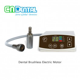 COXO® C-PUMA Dental Brushless Electric Motor